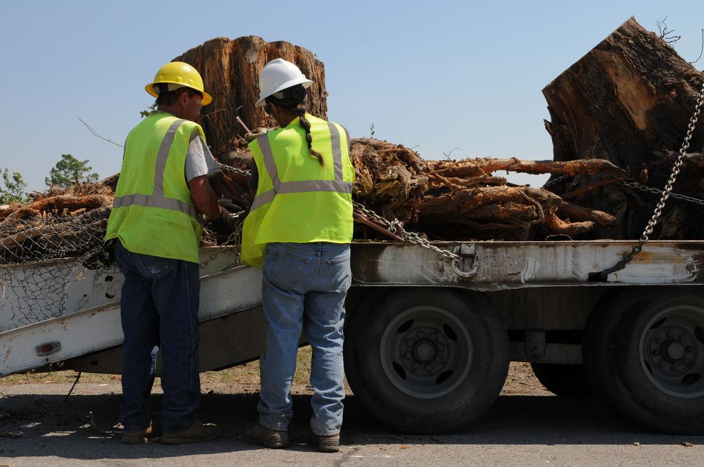 team of tree service workers removing a stump from the ground and haul it away on a truck